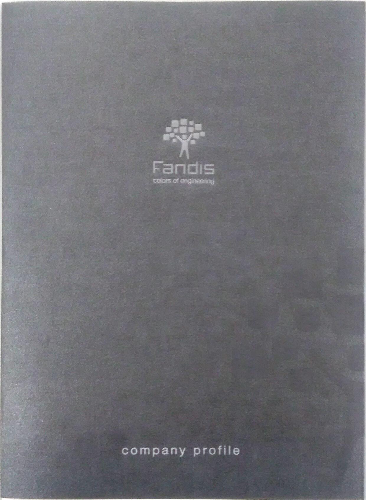 100 Monografia