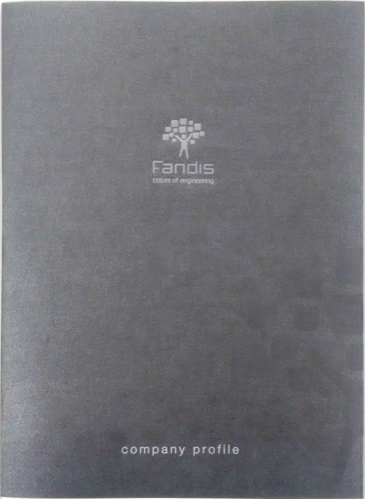 100 Company Profile